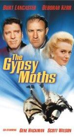 gypsy_moths.jpg