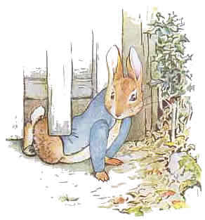 http://criminalbrief.com/wp-content/uploads/2009/09/Peter-Rabbit-4.jpg
