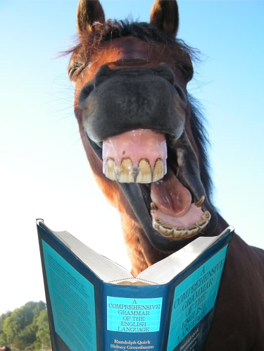 horses_mouth